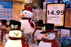 Sneeuwpoppen te koop